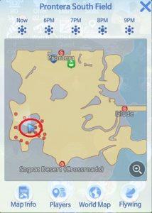 Ragnarok Origin Hidden Poring